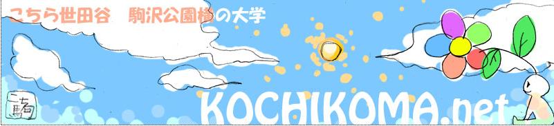 Kochi2