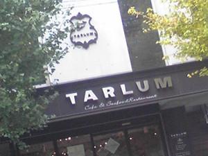 Talm_2